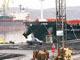 Стоимость реконструкции мурманского морского порта составит 7 млрд рублей