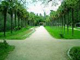 Московские парки ожидают порядка